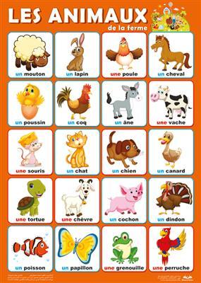 خرید پوستر حیوانات اهلی فرانسه