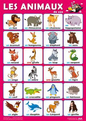 خرید پوستر حیوانات وحشی فرانسه
