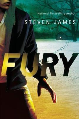 خرید کتاب انگليسی Blur Trilogy-Fury-Book2-Full Text